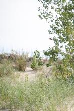 Chesterton, Indiana dunes 3