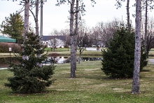 Lowell, Indiana parks